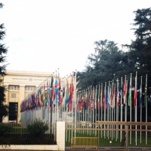 The UN flags